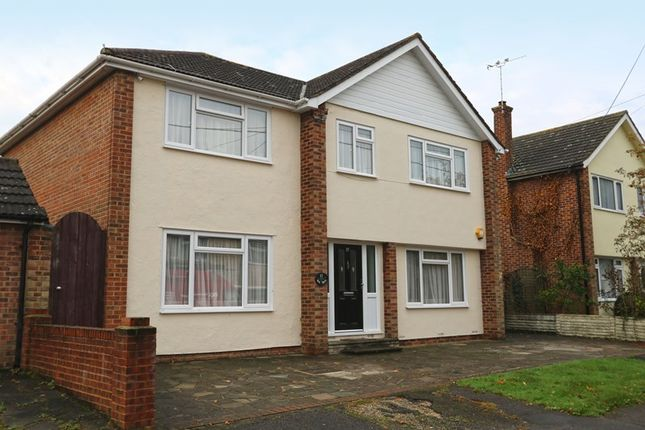 Thumbnail Detached house for sale in Oak Walk, Hockley