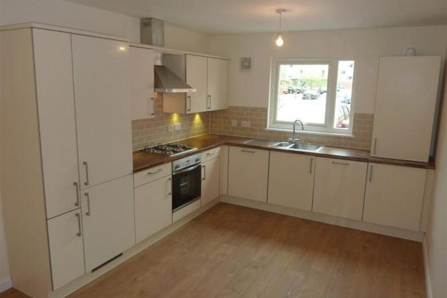 Thumbnail Terraced house to rent in Lillybank Mews, Arbroath Road, Dundee