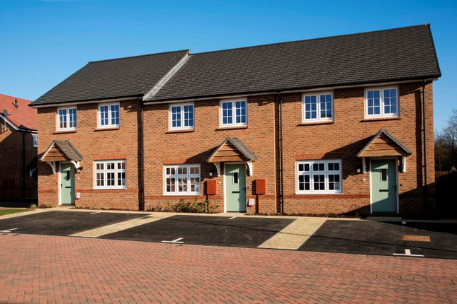Thumbnail Semi-detached house for sale in Finch Green, Caddington