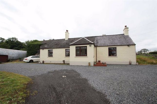 Thumbnail Detached bungalow for sale in Belfast Road, Downpatrick, Down