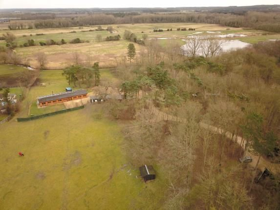 Thumbnail Equestrian property for sale in Northwold, Thetford, Norfolk