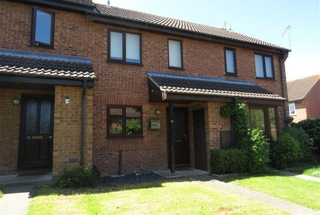 Thumbnail Terraced house to rent in Wainford Close, Worlingham, Beccles