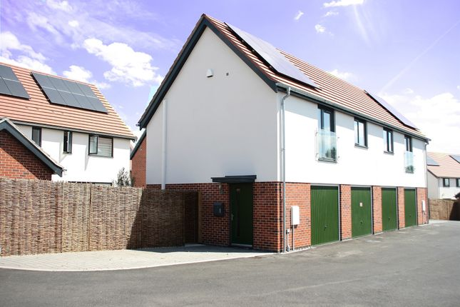 Thumbnail Property for sale in Coopers Crescent, Hingham, Norwich