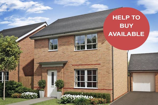 "Thumbnail Detached house for sale in ""Collaton"" at Ponds Court Business, Genesis Way, Consett"