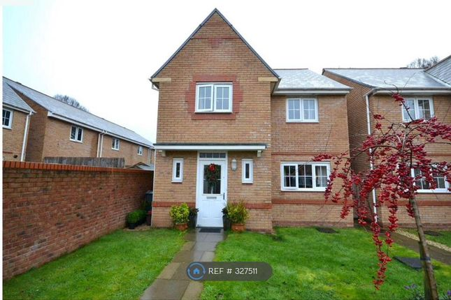 Thumbnail Detached house to rent in Scholars Drive, Penylan, Cardiff