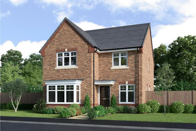 """Thumbnail Detached house for sale in """"Mitford"""" at Neil Fox Way, Wakefield"""