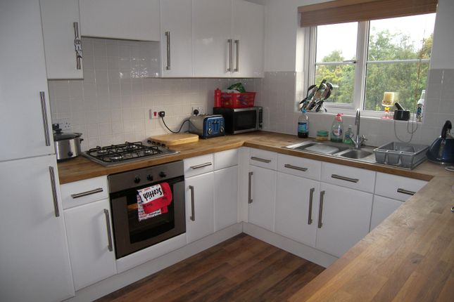 Thumbnail Property to rent in Crome Drive, Breydon Park, Great Yarmouth