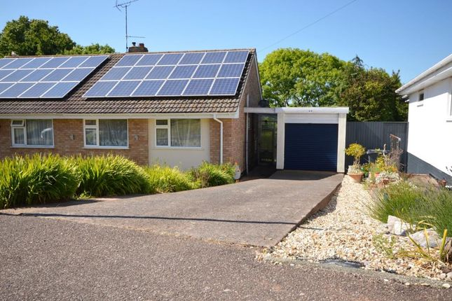 Thumbnail Semi-detached bungalow to rent in Chichester Close, Exmouth, Devon