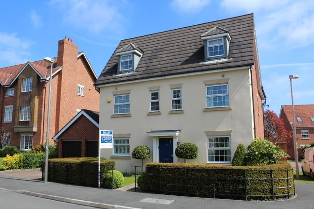 Thumbnail Detached house to rent in Chesterton Way, Weston, Crewe, Cheshire