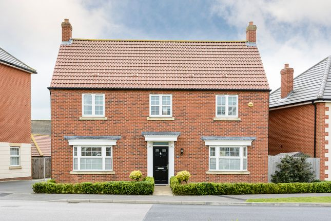 Thumbnail Detached house for sale in The Pines, Cringleford, Norwich
