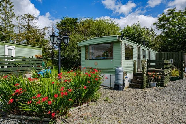 Thumbnail Detached house for sale in Rhos Holiday Park, Crossgates