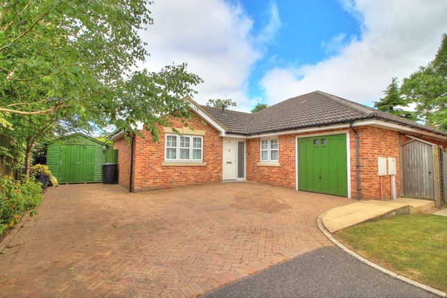 Thumbnail Bungalow for sale in Bolle Road, Alton