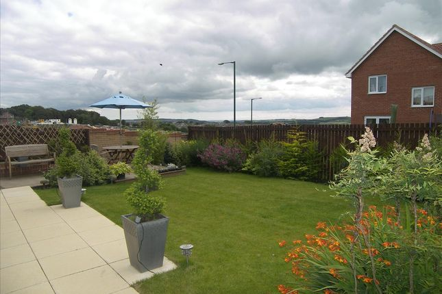 Thumbnail Detached house to rent in Langdon Close, Consett