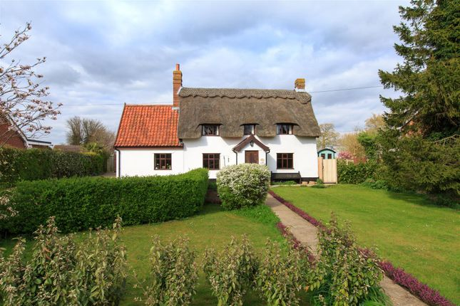 Thumbnail Detached house for sale in Bunwell, Norwich