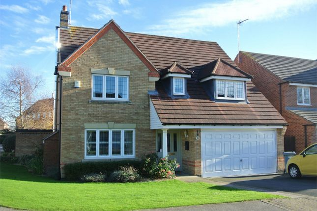 Thumbnail Detached house for sale in Tarragon Way, Bourne, Lincolnshire