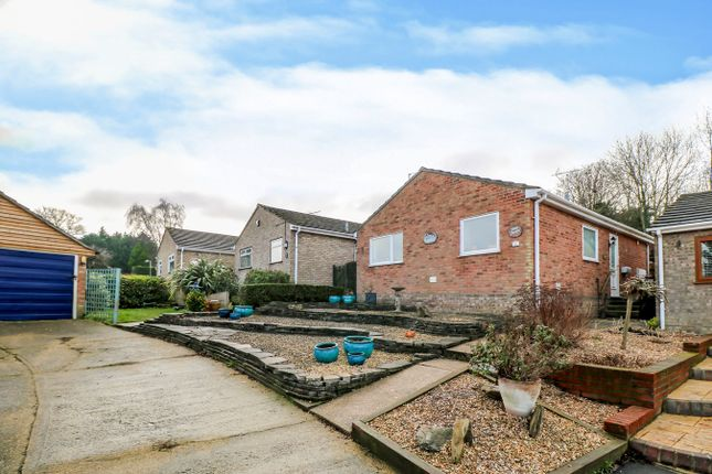 Thumbnail Bungalow for sale in Knights Close, Lawford, Manningtree