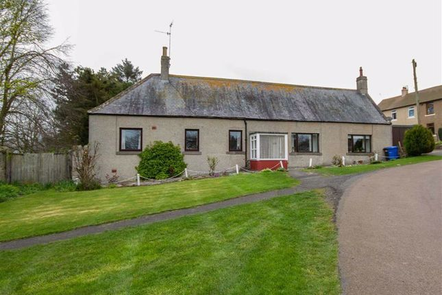 Thumbnail Detached bungalow for sale in East Ord, Berwick-Upon-Tweed