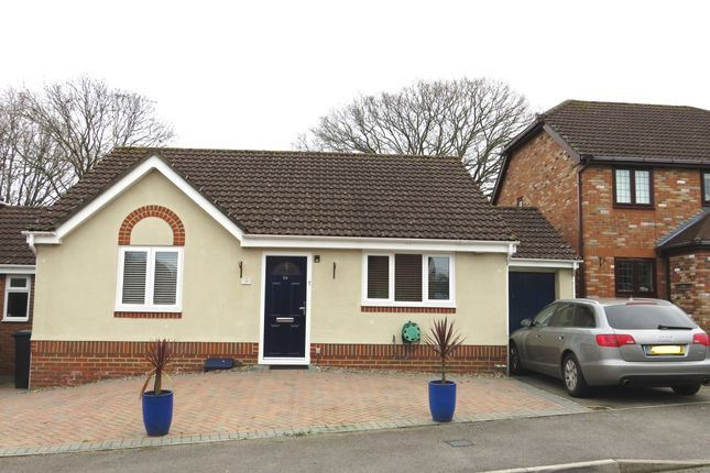 Thumbnail Detached bungalow for sale in Mallard Gardens, Hedge End, Southampton
