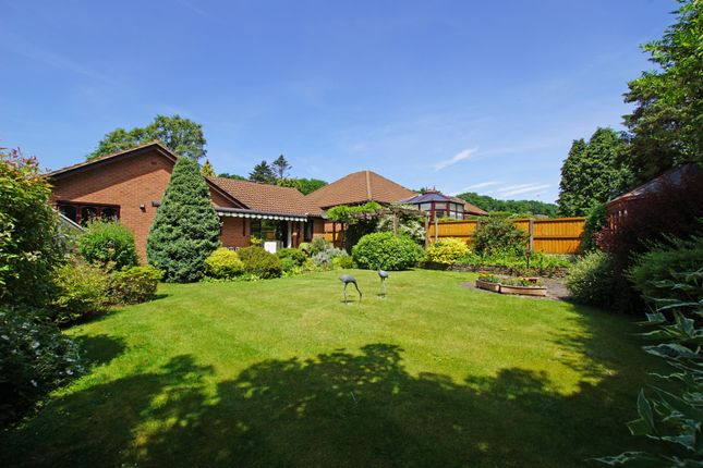 3 bed detached bungalow for sale in Clayton Gardens, Lickey B45 - Zoopla