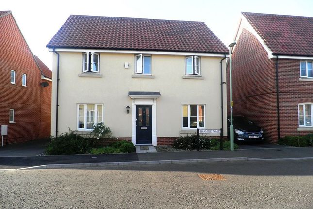 Thumbnail Detached house to rent in Bramble Walk, Beck Row, Bury St. Edmunds