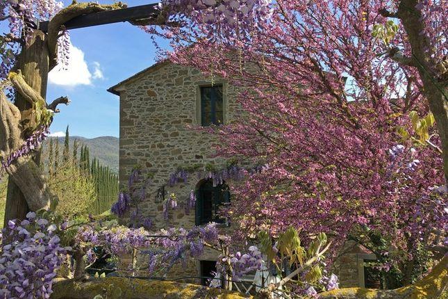 Villa Cipressi 07 04 2017 1 Web