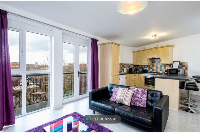 Thumbnail Flat to rent in Cromwell Road, Belfast