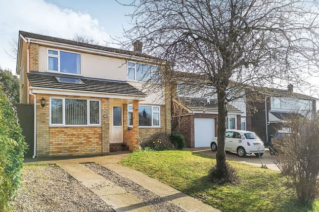 Thumbnail Detached house for sale in Leng Crescent, Norwich