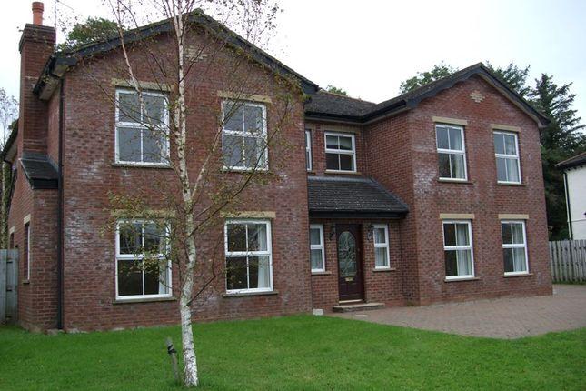 Thumbnail Detached house to rent in Glen Darragh Gardens, Glen Vine