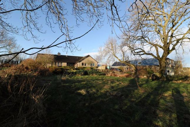 Thumbnail Detached bungalow for sale in Meikle Wartle, Inverurie