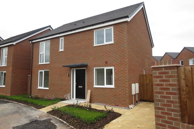 Thumbnail Detached house for sale in Victoria Park, Stoke-On-Trent