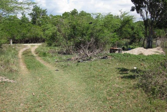 Land for sale in Black River, Saint Elizabeth, Jamaica