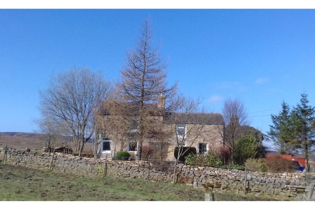 Thumbnail Cottage for sale in Allenheads, Hexham
