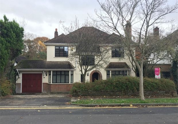 Thumbnail Detached house to rent in Hogarth Avenue, Brentwood, Essex