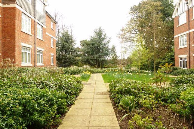 Communal Areas of Wake Green Road, Moseley, Birmingham B13