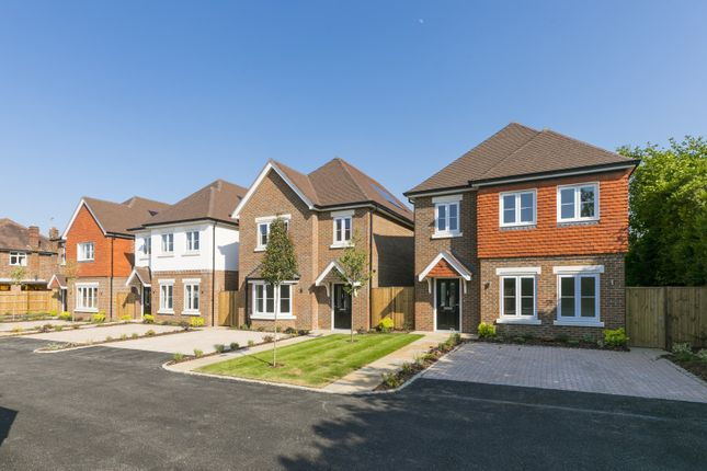 Thumbnail Detached house for sale in The Furrows, Walton-On-Thames