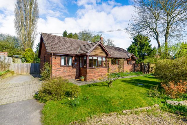 Thumbnail Detached bungalow for sale in School Road, Sible Hedingham, Halstead