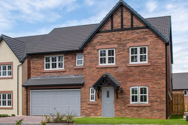 """Thumbnail Detached house for sale in """"Masterton"""" at Heron Drive, Fulwood, Preston"""