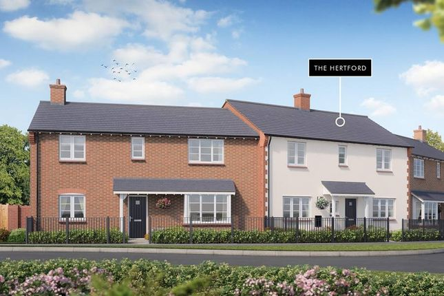 """Thumbnail Property for sale in """"The Hertford"""" at Campden Road, Shipston-On-Stour"""