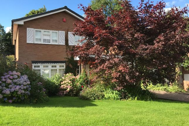 Thumbnail Detached house to rent in Harrisons Green, Edgbaston, Birmingham