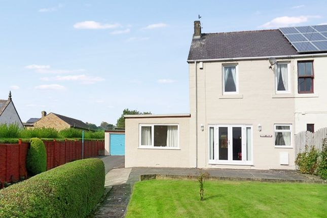Thumbnail Semi-detached house for sale in Park Road, Haltwhistle