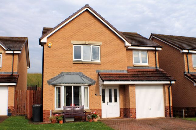 Thumbnail Detached house to rent in Kestrel Avenue, Dunfermline, Fife