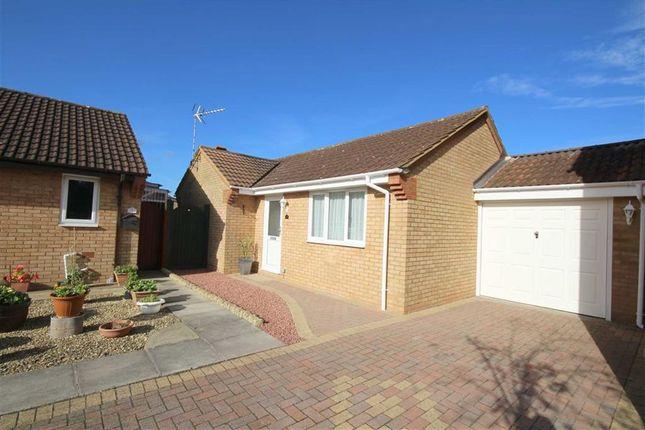 Thumbnail Detached bungalow for sale in Paulet Close, Swindon, Wiltshire