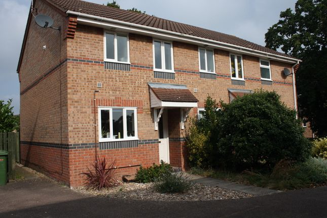 Thumbnail Semi-detached house to rent in Sorrel Drive, Thetford