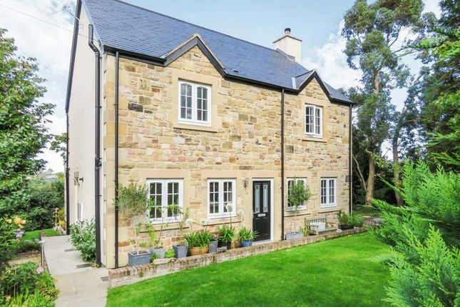 Thumbnail Detached house for sale in Alnwick