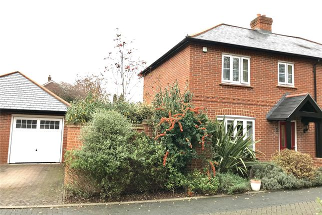Thumbnail Semi-detached house to rent in Bakeland Gardens, Alresford, Hampshire