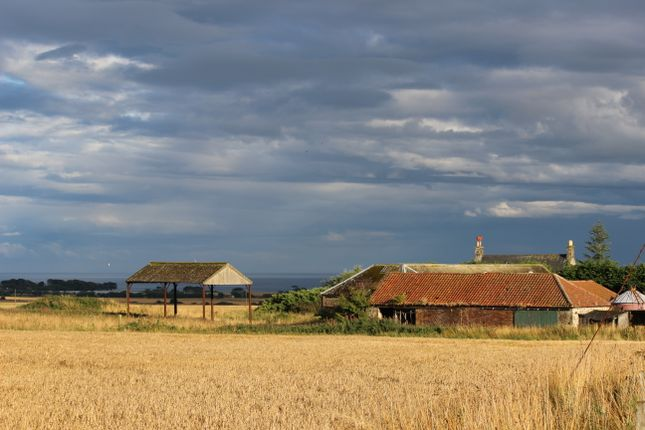 Steading From North West