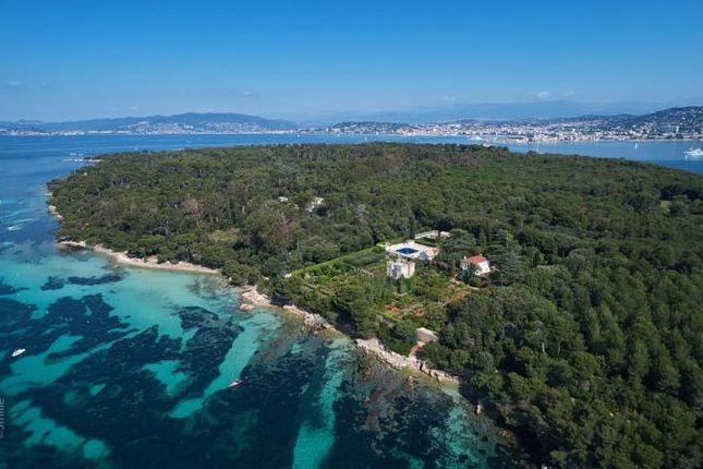 Thumbnail Villa for sale in Cannes, Cannes, Provence-Alpes-Côte D'azur, France