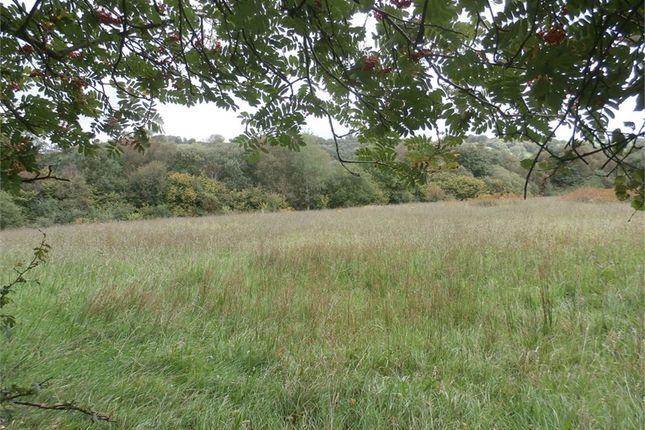 Thumbnail Farm for sale in Bettws Lleucu, Llwynygroes, Tregaron