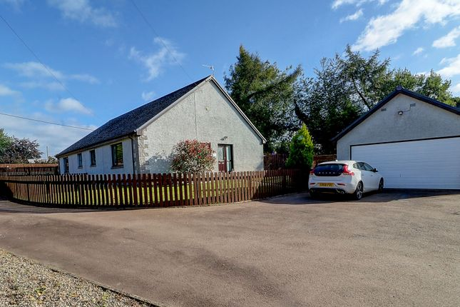 Thumbnail Semi-detached bungalow for sale in Napier Close, Marykirk, Laurencekirk
