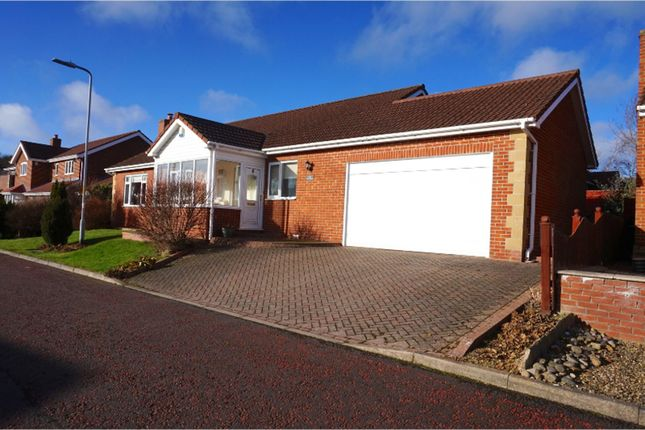 Thumbnail Detached bungalow for sale in Bute Drive, Rowlands Gill